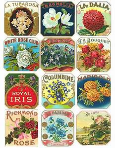 265 best vintage labels and vintage label templates images With best brand of paint for kitchen cabinets with how to print sticker labels