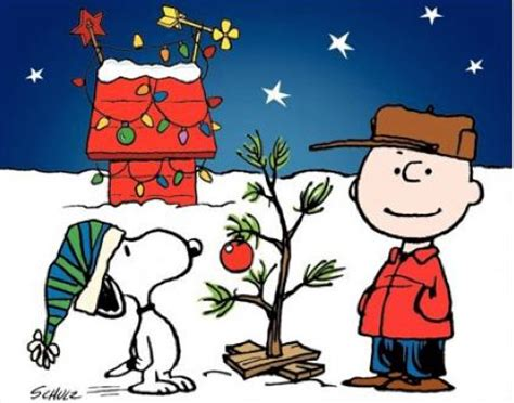 charlie brown christmas its not whats under the tree quote it s not what s the tree my mlis journey so far
