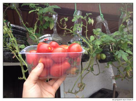faire pousser ses l 233 gumes bio sans jardin se preparer