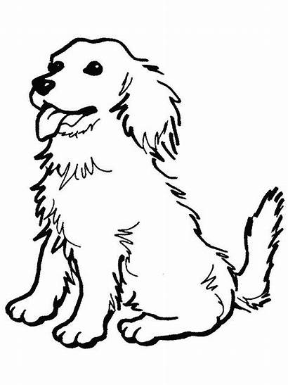 Dog Clipart Drawing Sitting Coloring 78kb Resolution