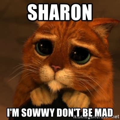 Dont Be Mad Meme - sharon i m sowwy don t be mad shrek cat v1 meme generator