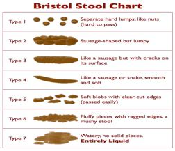 pencil like stool causes 53 light brown watery stool the chicken what 039 s