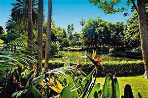 hotel botanico the oriental spa garden puerto de la With katzennetz balkon mit botanico the oriental spa garden