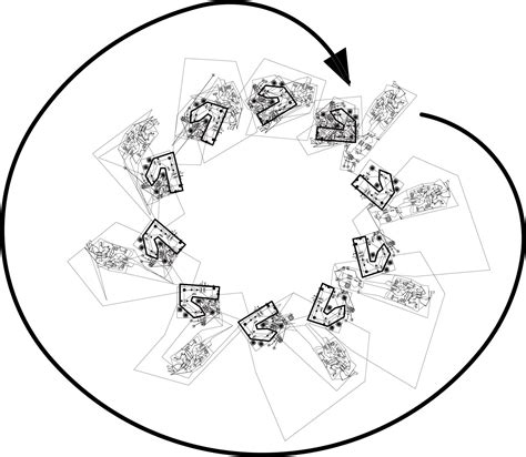 unlabeled flower diagram   clip art