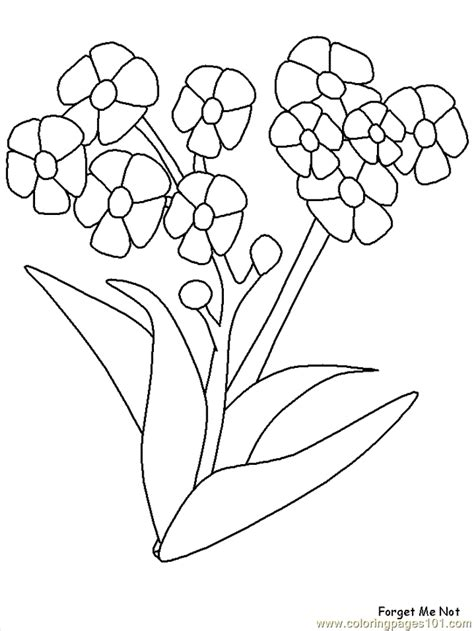 realistic flowers coloring page  realistic flowers coloring pages coloringpagescom