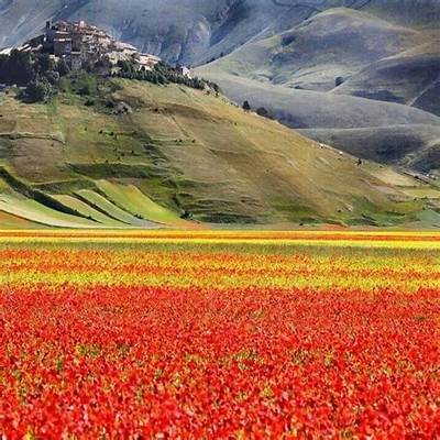 Castelluccio di norcia italyThis must be the place