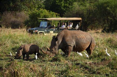 The 50 best safari holidays