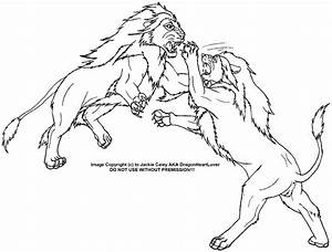 Wolf Fighting Lion