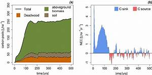 Carbon stocks and carbon fluxes. Simulated forest carbon ...