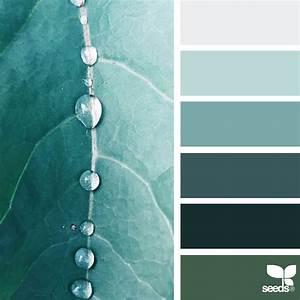 Nature-Inspired Color Palettes AKA Design Seeds For