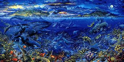 Sea Wallpapers Animals Backgrounds Abyss Wallpapertag Popular