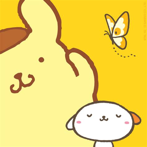 16 Pom Pom Purin Pictures, Images, Photos for Facebook and WhatsApp   Pictures Cafe