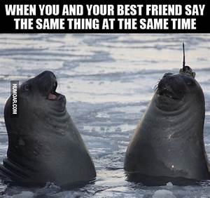 You and Your Best Friend Say The Same Thing - Humoar.com