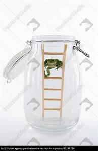 Bilder Im Glas : wetterfrosch im glas lizenzfreies foto 13281724 bildagentur panthermedia ~ Orissabook.com Haus und Dekorationen