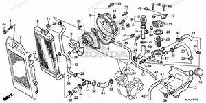 Honda Motorcycle 2018 Oem Parts Diagram For Radiator