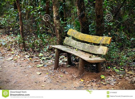 wooden park bench sitting area   woods stock photo