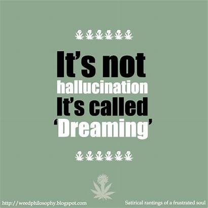 Quotes Weed Hallucination Marijuana Cool Funny Quotesgram