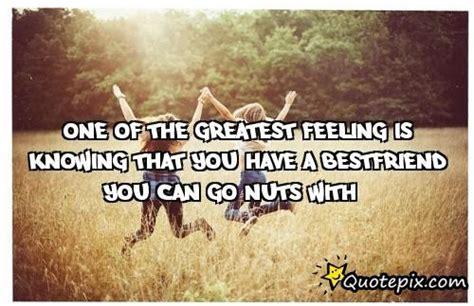 nuts   quotes quotesgram