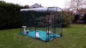 Construire Enclos Pour Chats : cat chat britivana l enclos pour chat omlet youtube ~ Melissatoandfro.com Idées de Décoration