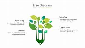 Tree Diagram - 12