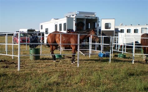 horse portable corrals corral panels go horses trailer panel travel uses lightweight fencing safe process near paypal using credit trail