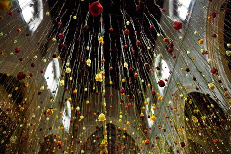 suspended floral installations  rebecca louise law
