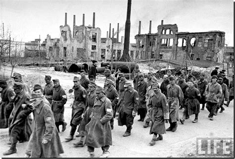 the siege of stalingrad illustrated history relive the times images of war