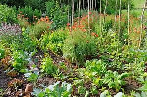 Gemüsegarten Anlegen Beispiele : anlegen eines gartenteiches der gartenteich die oase im ~ Lizthompson.info Haus und Dekorationen