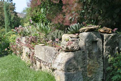 Trockenmauern Für Den Garten by Die 10 Sch 246 Nsten Pflanzen F 252 R Trockenmauer Und Co