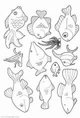 Fish Coloring Pages Printable Aquarium Colouring Harry Dirty Dog Educative Printables Toddlers Getdrawings Amp Getcolorings Comprehensive 2941 2000 Bestappsforkids Colorings sketch template