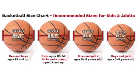 basketball measurements basketball sizes a guide for all levels of play stack