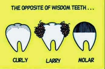 wisdom teeth curly larry molar