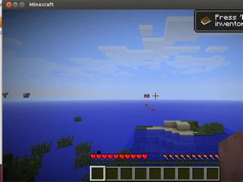 play minecraft  ubuntu  pictures wikihow