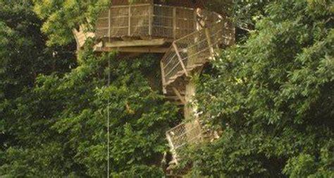chambre d hotes dans les arbres cabane dans les arbres à isigny le buat 25882