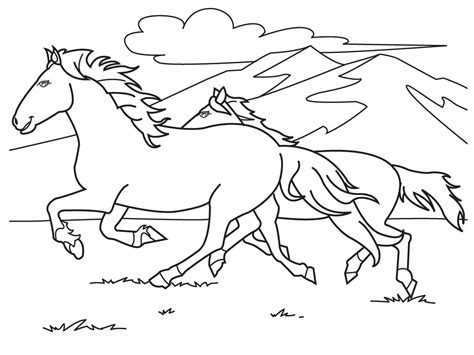 images  adult coloring pages horses  pinterest