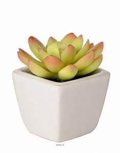 Plante Grasse Artificielle : plante grasse artificielle succulente cact e en pot ~ Teatrodelosmanantiales.com Idées de Décoration