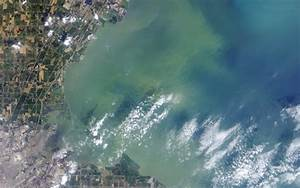 Toxic Toledo Algae Bloom Seen from Space (Photo)