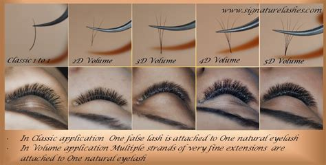 guide book eyelash extension signature lashes by expertly trained master lash artist