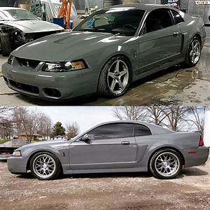 Cobra 🐍 | Mustang cars, Ford mustang shelby, 2002 ford mustang