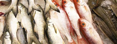 types  fatty  lean fish salmon tilapia tuna mahi