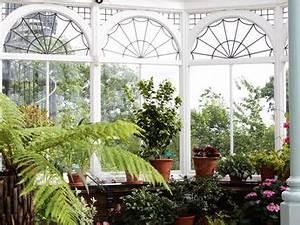 Plantes D Hiver Extérieur Balcon : comment conserver un hibiscus pendant l hiver pivoine etc ~ Nature-et-papiers.com Idées de Décoration