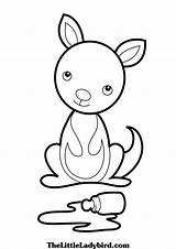 Kangaroo Coloring Pages Printable Koala Kangaroos Clipart Cartoon Sheets Animal Clipartpanda Clipartmag Craft Getcolorings Drawing Australian sketch template