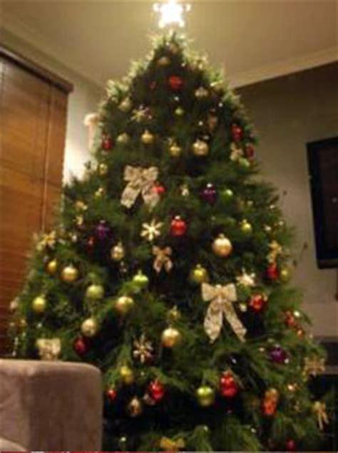 advent calendar day  christmas tree shapes christmas