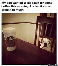 Too Much Coffee Funny Animals