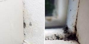 Schimmelflecken Kleidung Entfernen : heimwerken sanieren ~ Lizthompson.info Haus und Dekorationen