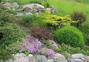 Steingarten Anlegen Tipps : steingarten hang anlegen steingarten anlegen ~ Lizthompson.info Haus und Dekorationen