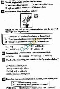Nstse 2011 Solved Question Paper For Class Vi