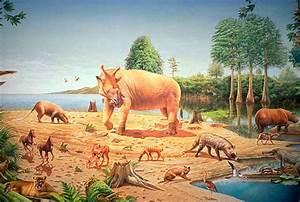Geological, Timeline