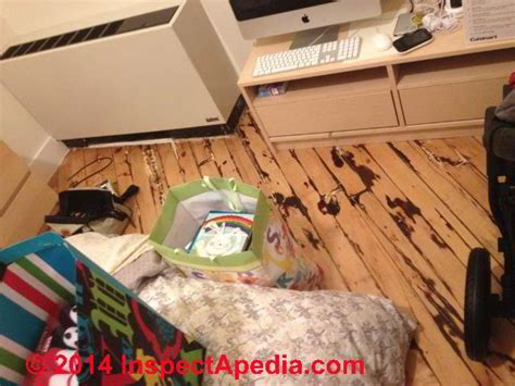 Urine Ruining Hardwood Floors by Can Cat Urine Ruin Hardwood Floors Carpet Vidalondon