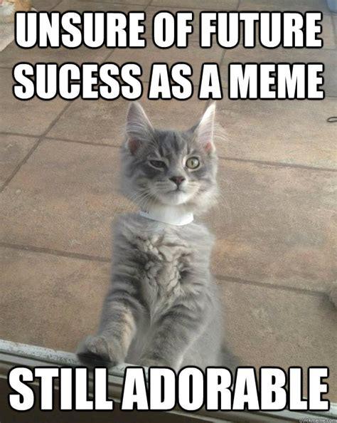 Success Cat Meme - unsure of future sucess as a meme still adorable skeptical kitten quickmeme
